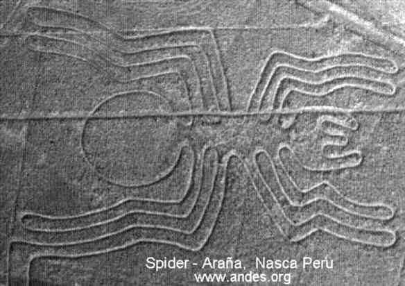 http://www.andes.org/graphic/nasca_sd.jpg